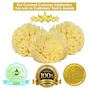 Natural Bath Sponge 4inch Wool Sea Sponge (polybox) SWATCH
