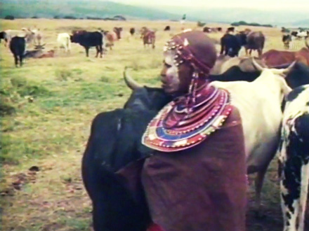 Diary of a Maasai Village, Part 5 THUMBNAIL