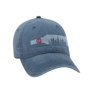 Bottle Dad Hat LARGE