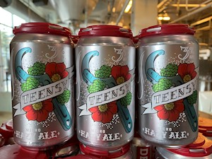 Teensy Micro IPA 6 pk cans LARGE
