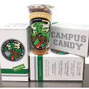 CAMPUS CANDY SWATCH