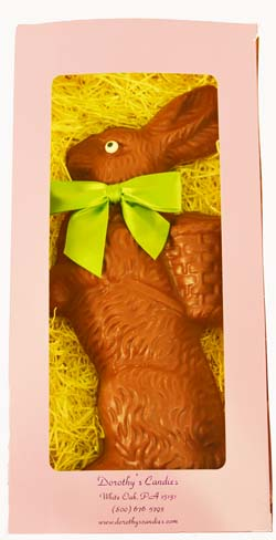Chocolate Bunny Mould in Spring Box