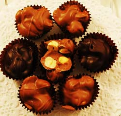Chunks of Hazel nuts in a chocolate cluster; filberts