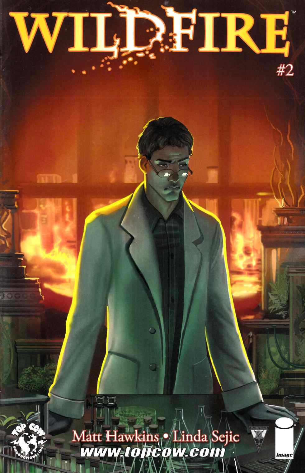 Wildfire #2 Cover A- Linda Sejic [Comic] LARGE