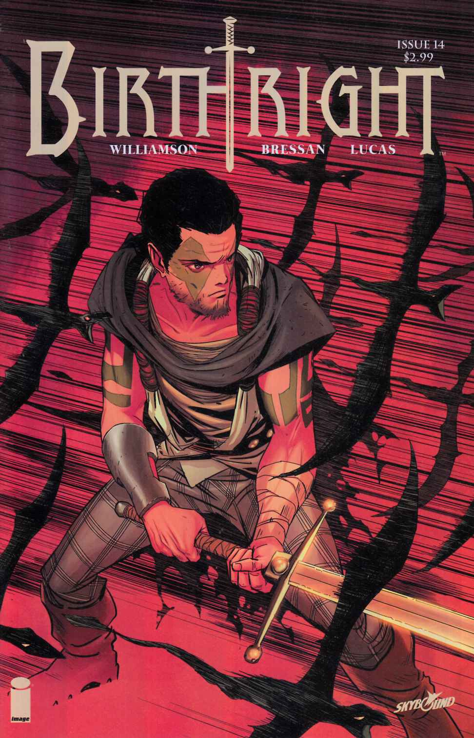 Birthright #14 Cover B- Dragotta [Image Comic] LARGE