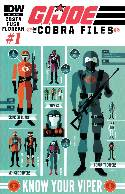 GI Joe Cobra Files #1 Cover RIA Near Mint (9.4) [IDW Comic] THUMBNAIL