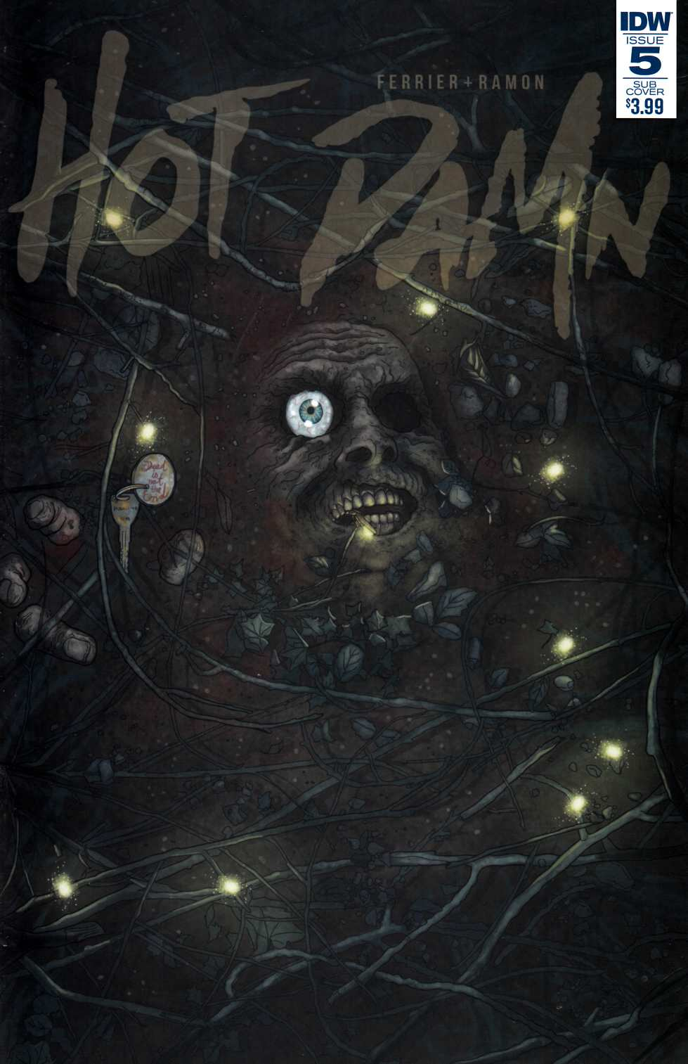 Hot Damn #5 Subscription Cover [IDW Comic]
