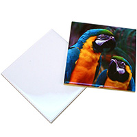 "6"" Glossy Ceramic Tile - Sublimation Blank MAIN"
