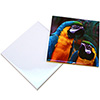 "6"" Glossy Ceramic Tile - Sublimation Blank"
