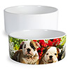 Large 40 oz Ceramic Pet Bowl - Sublimation Blank