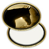 Oval Brass Belt Buckle with Sublimatable Insert - Sublimation Blanks