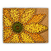 Pretty Twisted Spring Flower String Art DIY Craft Kit