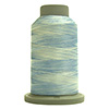 Carolina 60147 Affinity Polyester Variegated 1000 yds Embroidery & Quilting Thread by Fil-Tec