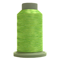 Chartreuse 60156 Affinity Polyester Variegated 1000 yds Embroidery & Quilting Thread by Fil-Tec MAIN