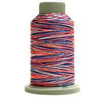 Patriot 60199 Affinity Polyester Variegated 1000 yds Embroidery & Quilting Thread by Fil-Tec MAIN