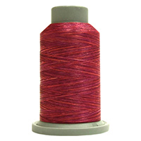 Wine 60151 Affinity Polyester Variegated 1000 yds Embroidery & Quilting Thread by Fil-Tec