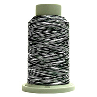 Zebra 60453 Affinity Polyester Variegated 1000 yds Embroidery & Quilting Thread by Fil-Tec MAIN