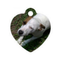 Metal Heart Pet Tag - Sublimation Blank MAIN