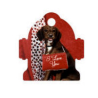 Metal Fire Hydrant Pet Tag - Sublimation Blank