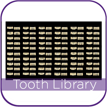 EXOCAD TOOTH LIBRARY ZRS THUMBNAIL