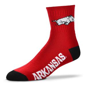 Arkansas Razorbacks - Team Color THUMBNAIL