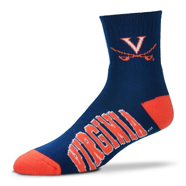 Virginia Cavaliers - Team Color LARGE
