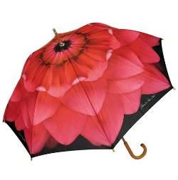 Pink Dahlia Umbrella
