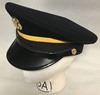 US Army Male Enlisted ASU Service Cap SWATCH