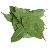 Bay Leaves Bunch, ea. THUMBNAIL