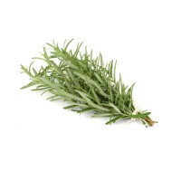 Organic Rosemary Bunch, ea. MAIN