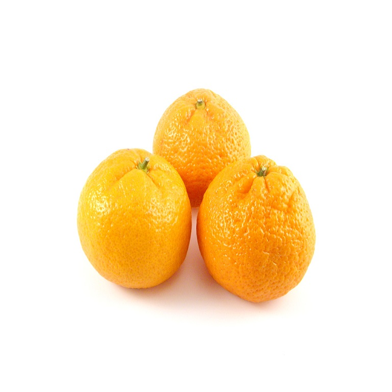 Organic Satsuma, 1lb. Bag LARGE