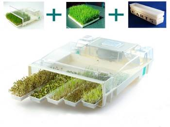 easygreen easy green mikrofarm automaic sprouter sprouts microgreens