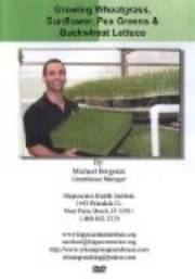 Michael Bergonzi Growing Wheatgrass & Sprouts DVD THUMBNAIL