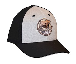 Hershey Bears Two-Tone Structured Flex Hat LARGE