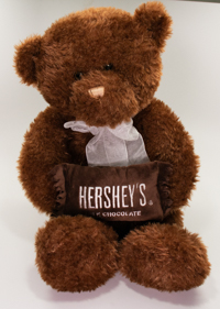 Hersheypark Brand Bear Plush LARGE