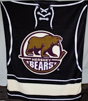 Hershey Bears Blanket Primary Logo Micro Fleece THUMBNAIL