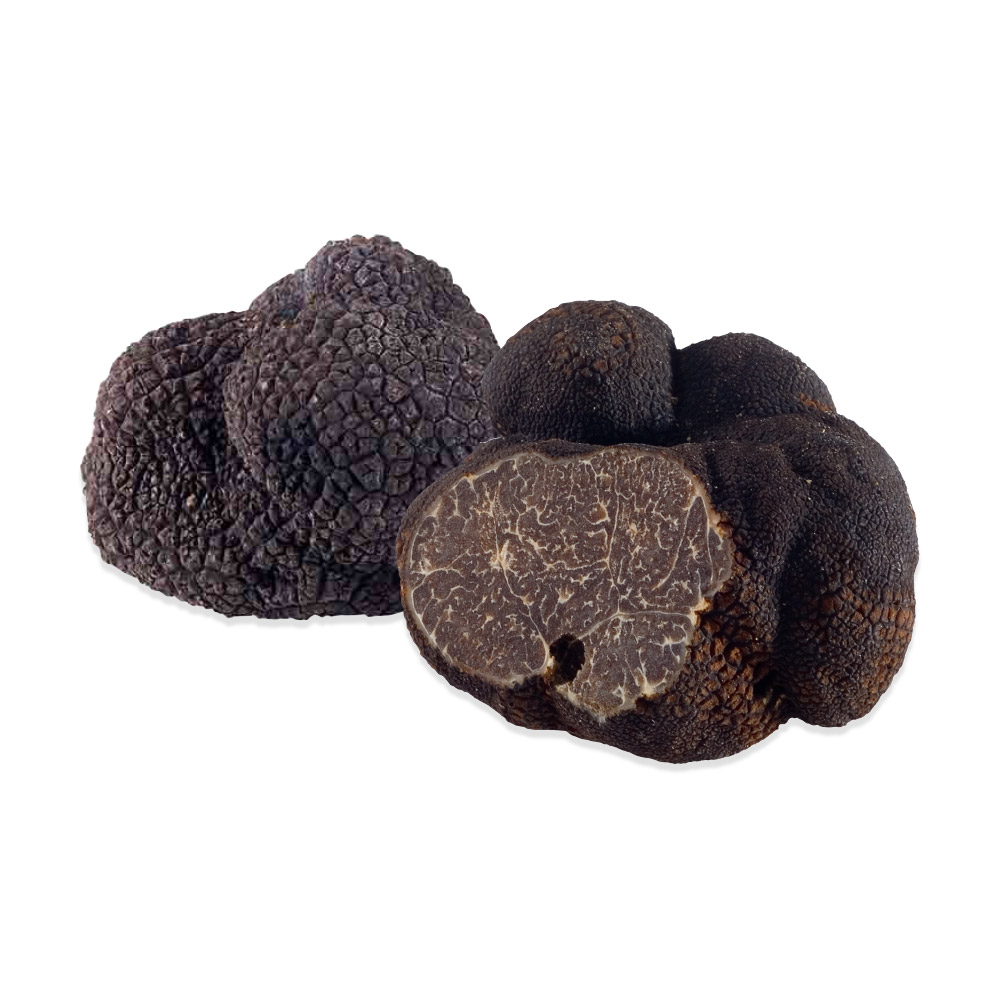Fresh Black summer Truffles 4 oz LARGE