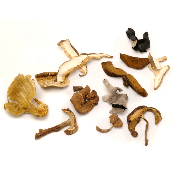 DRIED FOREST MIX MUSHROOMS 2 OZ LARGE