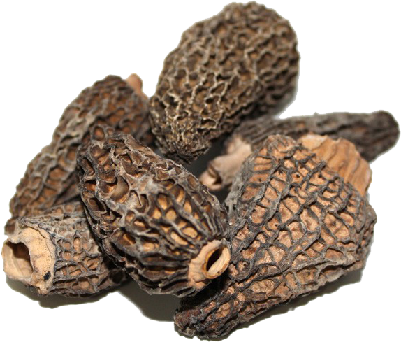 DRIED MORELS LARGE  1 LB THUMBNAIL