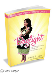 The Busy Homeschool Mom's Guide to...Daylight