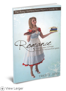 The Busy Homeschool Mom's Guide to Romance LARGE