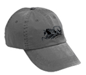 IAEP Logo Base Ball Cap MAIN