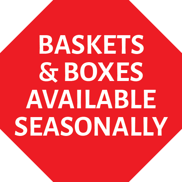 Seasonal Availability MAIN