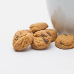 Bite-Sized Peanut Butter Chocolate Chip  Cookies 4 oz THUMBNAIL