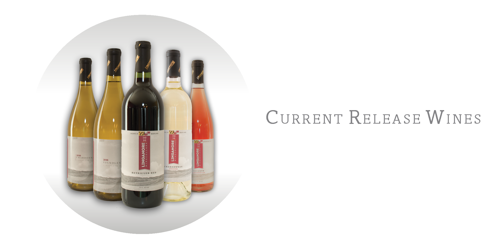 Current Release Wines