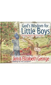 Illustrated God's Wisdom for Little Boys LARGE