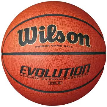 "WTB0586 Wilson Evolution Womens' Size 6 Basketball - 28.5"" MAIN"