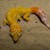 Leopard Gecko - Clown  (Adult-Unsexed 0.0.1) (Eublepharus macularis).. SWATCH