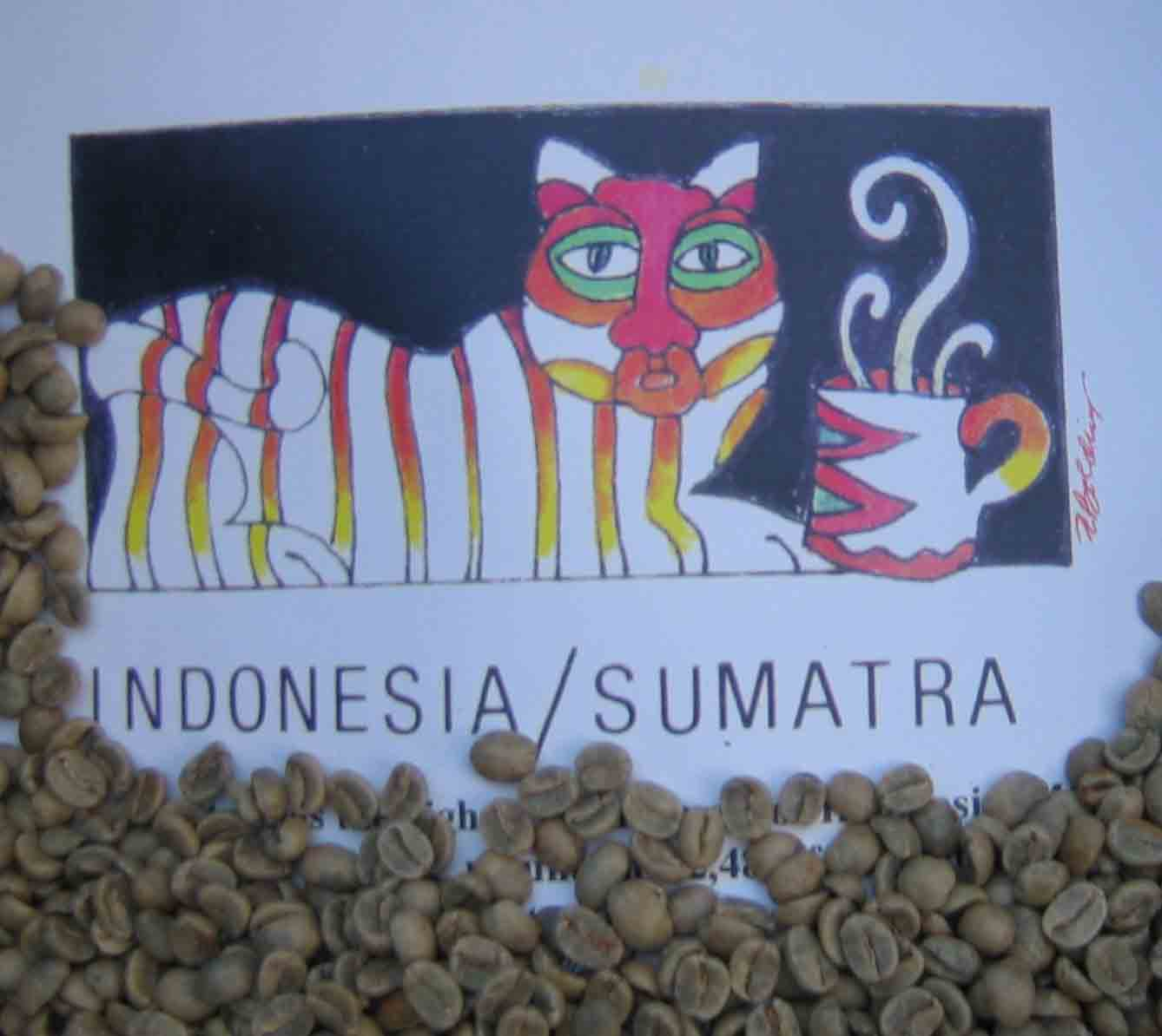Green  Coffee Sumatra Black Panther Coffee MAIN