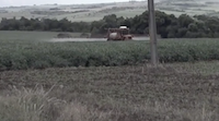 Agrofuels - a film about food-based fuel sources THUMBNAIL